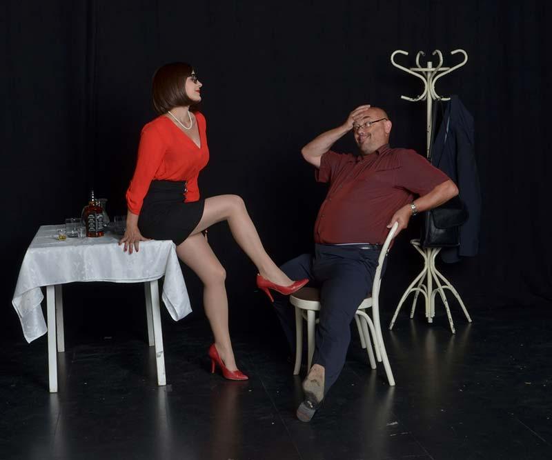 roman-vodeb-razocarana-gospodinja